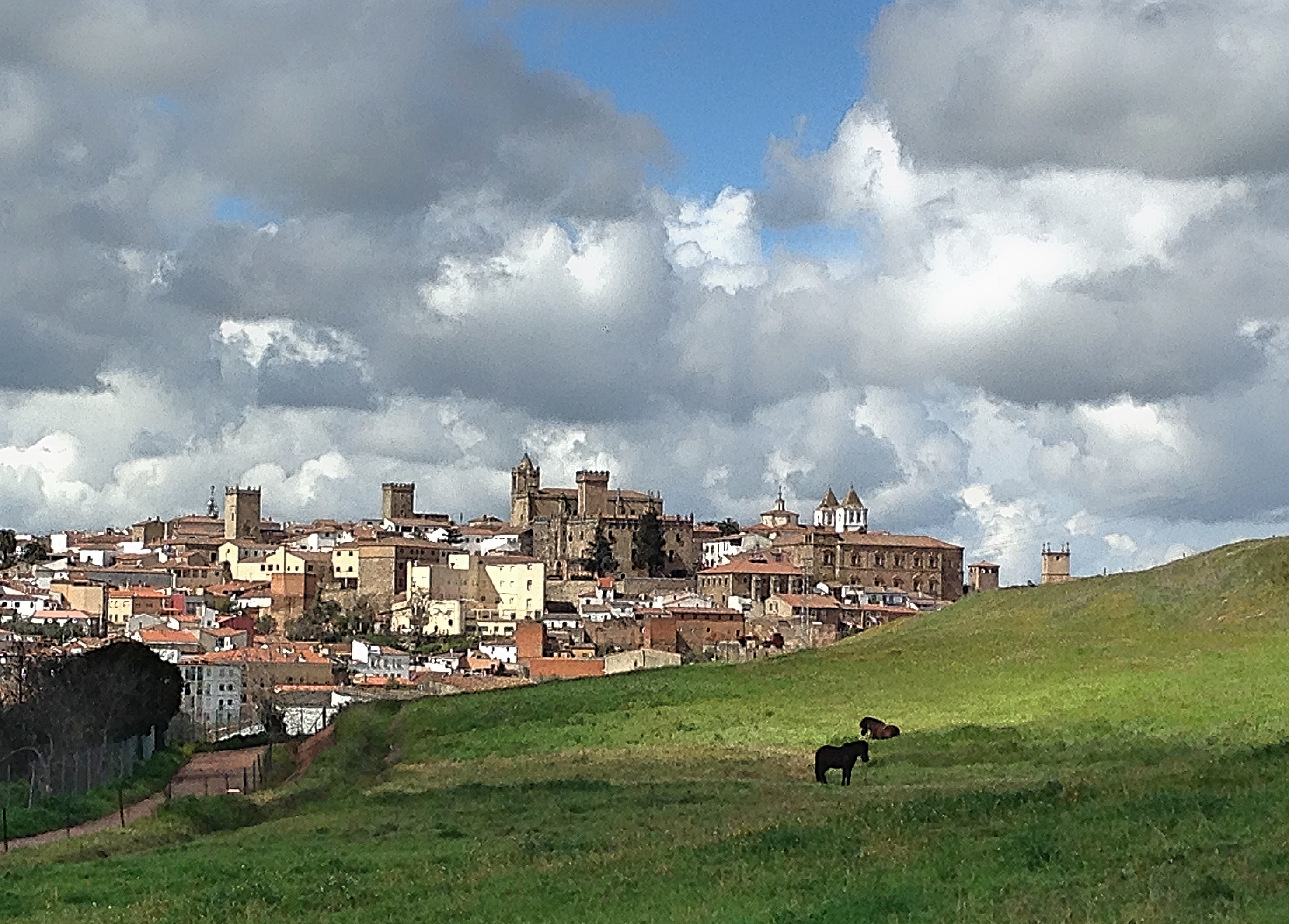 Caceres Distance
