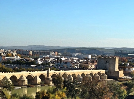 Cordoba_Bridge