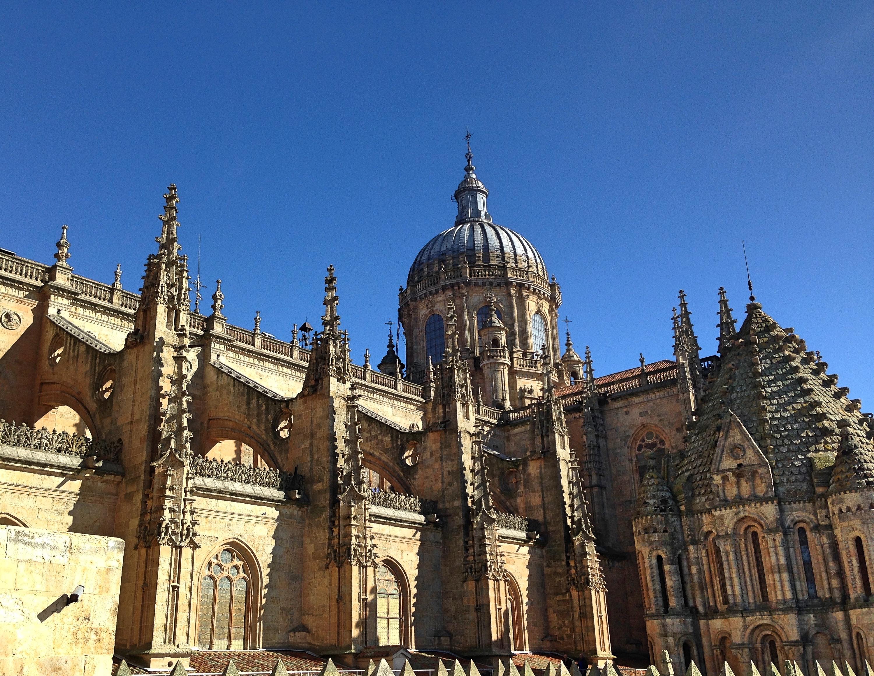 Salamanca_cathedralroof